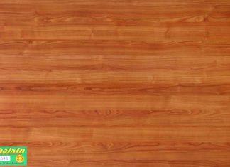 Sàn gỗ Thaixin HK 1048