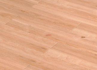 Sàn gỗ Malayfloor SP 555