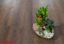 Sàn gỗ Robina P14