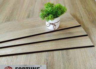 Sàn gỗ Fortune 811